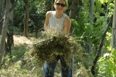 Proyectos de agricultura natural